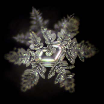 Wasserkristallbild